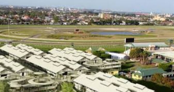 TWO RACE HORSES ELECTROCUTED AT NEWCASTLE RACE COURSE.